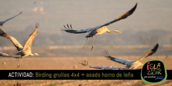 Actividad Birding Grullas 4x4 + Asado horno de leña @ Completo Turístico Isla del Zujar | Extremadura | España