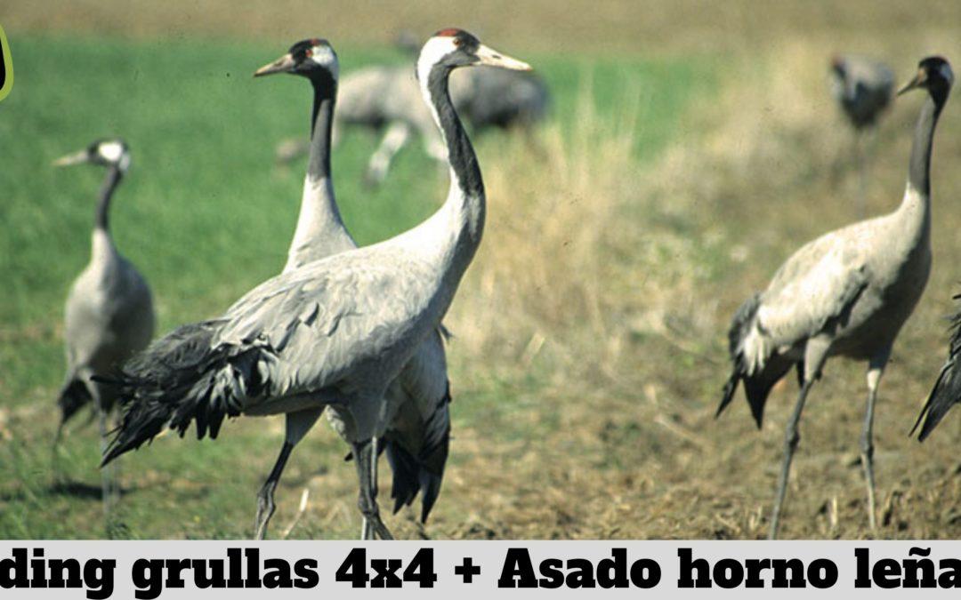 ACTIVIDAD: Birding Grullas 4×4 + Asado Horno de Leña
